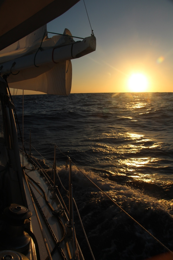 Sailing into a new day on the edge of the world NZ Passage