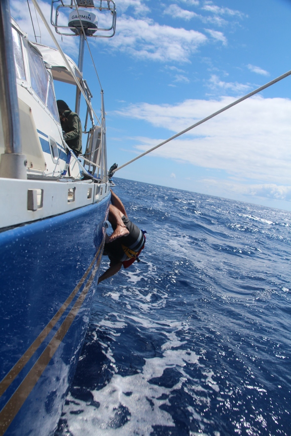 After Bens nap he decided to scrub the water line as we sailed heeled over, looks great.
