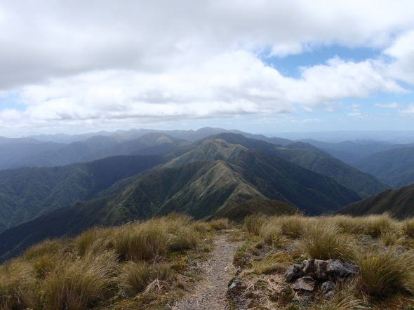 I was far into the range and above the tree line for good now, but the great west wind gales from the Tasman Sea kicked up as I climbed higher into the clouds across the mountain tops.